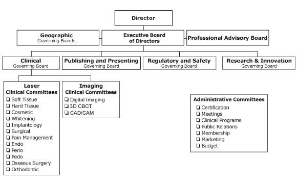 WCLI Org Chart
